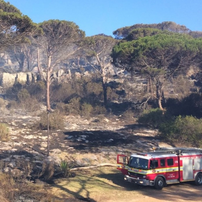 Da Gama Baboon Troop & Ocean View Fire Situation Report - 14h00 - 12 January 2017